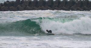 【シークエンス・オブ・ザ・HURLEY SURF CLUB JP伊勢】深いボトムターンからの鋭いラッピング・カーヴィング・テールスライド・ディープレイバック by 大原洋人