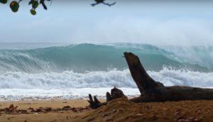 """【待望の】Filipe Toledo、Barron Mamiya、Yedin Nicolがパナマの底掘れビーチブレイクのチューブを攻める""""In and Around Water""""エピソード1がドロップ!!"""